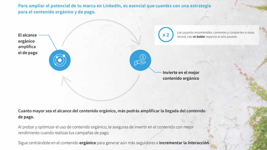 Amplía el potencial de tu marca en Linkedin Imagen Uno